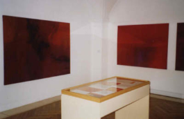 Anne Slacik Musée Pierre-André Benoît