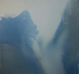 Anne Slacik Peintures <br>2000 – 2001